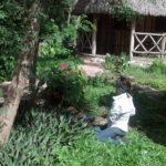 Campamentos de Conservación en Yucatán